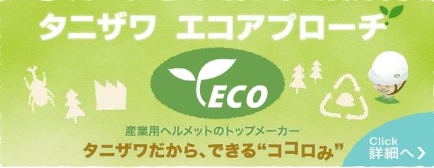 谷沢ECOアプトーチTOP